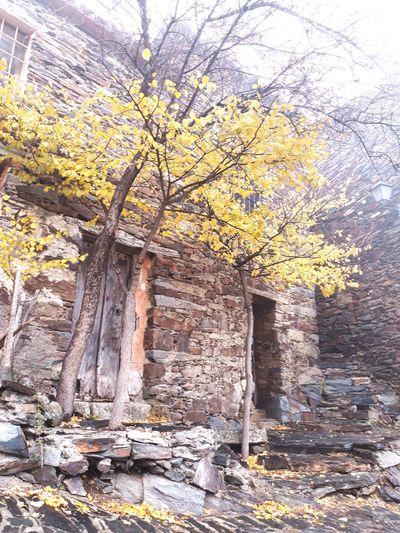 Patones De Arriba España Winter Trees Stonestructures Stones Old Buildings Tree Architecture