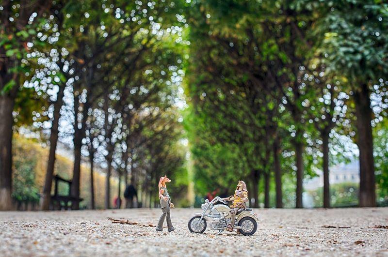 Jardin Du Palais Royal Jarjarbinks Toys Starwars à ++