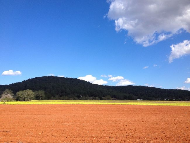Ibiza Landscape Red Earth Yellow Flowers Blue Sky White Clouds Vibrant Colors No Filter Needed Ibiza Campo Ibiza Rich Soil Open Space
