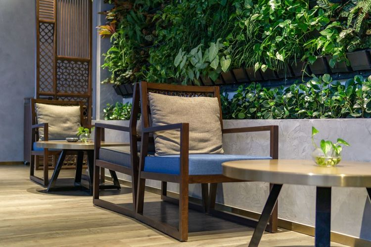 Coffee shop natural style. Plant Seat Chair Table Furniture Potted Plant Nature Wood - Material No People Absence Wood Architecture Indoors  Leaf Selective Focus Cafe Coffee Shop Refreshment Restaurant Resting Place Resting Time Garden Style