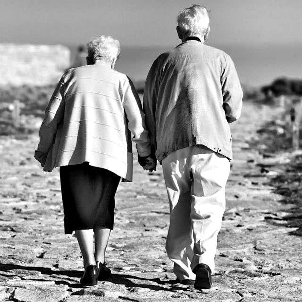 senior adult, rear view, senior women, senior men, senior couple, walking, two people, full length, heterosexual couple, togetherness, women, casual clothing, men, retirement, couple - relationship, beach, wife, day, adult, adults only, outdoors, human back, people, back