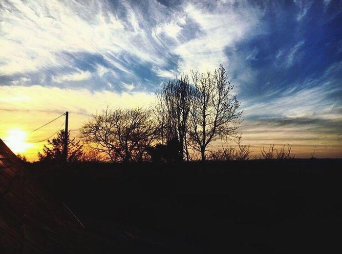 First Eyeem Photo France Bretagne Finistere Coucher De Soleil Maison Sun Arbre Contrast Ciel Nuages Paysage