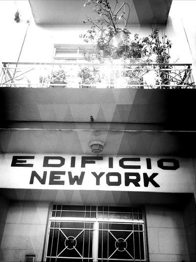 NY Monochrome Blackandwhitephotography Architecture New York