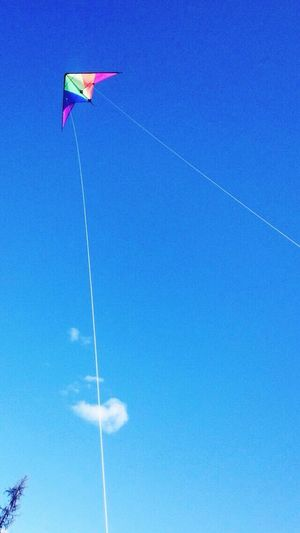 Kites Flying High Flying Windy Flyingkites Outside Outdoors Idaho Idahome Clouds Bluesky Clearsky Summer Summer2k15 Summer2015 MissSummer Summercomeback Rainbowkite Colorfulkite