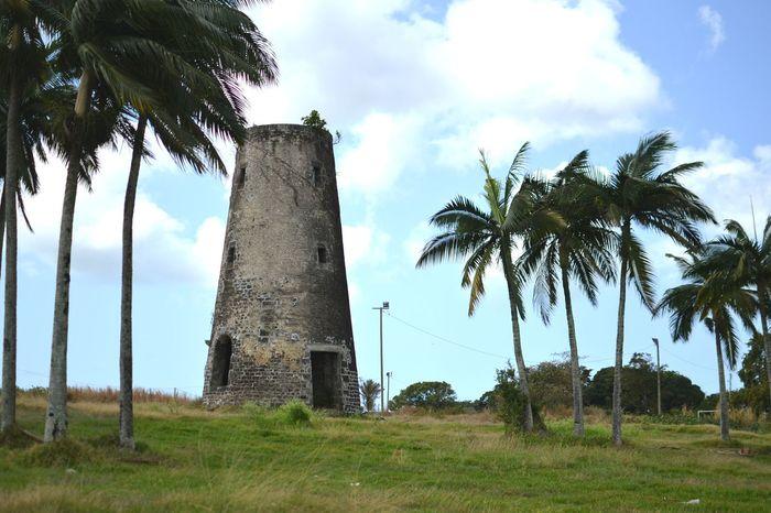 mauritius Made In Mauritius Ilemaurice Green Tower Palmtrees Old Sugarmill