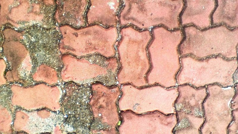 Full Frame Textured  Wall Red Thailnd Clay Location Outdoor Red Color Pattern Abstract