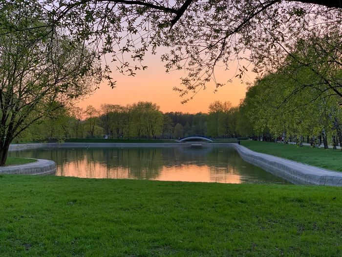 🌿 Spring Time 🌿 IPhoneography Park Evening Spring Springtime Plant Tree Water Nature Grass Green Color Lake Sky Beauty In Nature No People Tranquility Outdoors Growth Bird Tranquil Scene Reflection Day Scenics - Nature Sunset Flock Of Birds