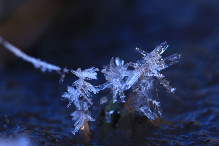 Abstract artwork made by nature 😊😊 Winter Snowflake Cold Temperature Snow Ice Frost Frozen Close-up Blue Ice Crystal Christmas Nature Beauty In Nature Single Object Christmas Decoration No People Water Shiny Outdoors Sky