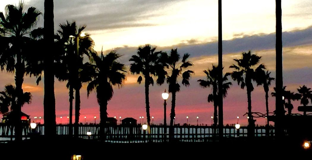 Huntington Beach Pier Sunset Palm Tree Tree Sunset Sky Cloud - Sky Sea City Outdoors Nature Growth Travel Destinations Silhouette Building Exterior Illuminated Architecture No People Scenics Day Johnwickphotography John Wick John Wick Photography