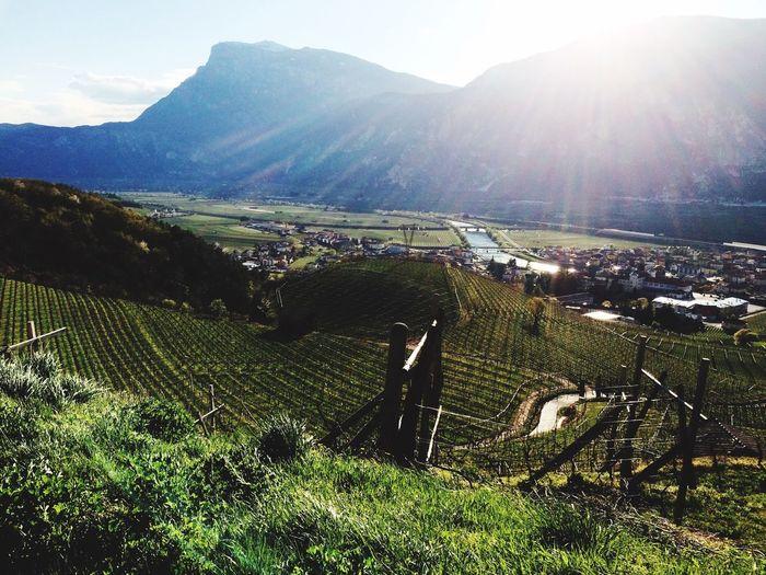 Weinstraße Südtirol Italy 🗻🇮🇹