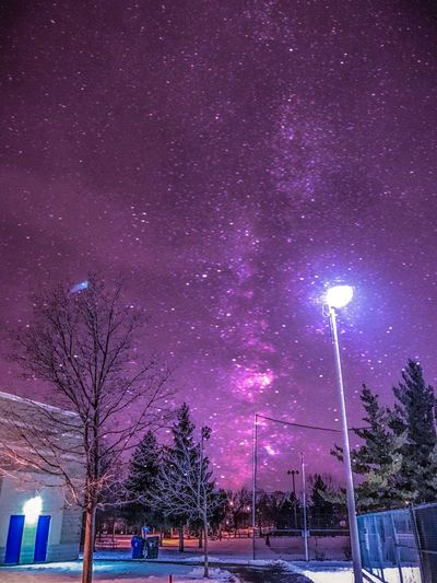 Tree Illuminated Night Purple Sky Lighting Equipment Outdoors No People Nature Star - Space Beauty In Nature Constellation Galaxy Milky Way Star First Eyeem Photo Landscape Stockphoto Landscape_photography Astronomy Astrophotography Nightphotography Long Exposure EyeEm Best Shots EyeEm Nature Lover