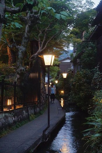 Vacations Japan Outdoors Country Nature Day Water Gujohachiman Nagoya Gifu Travel Summer Narrow Street Backstreet Alley Street Grass Evening