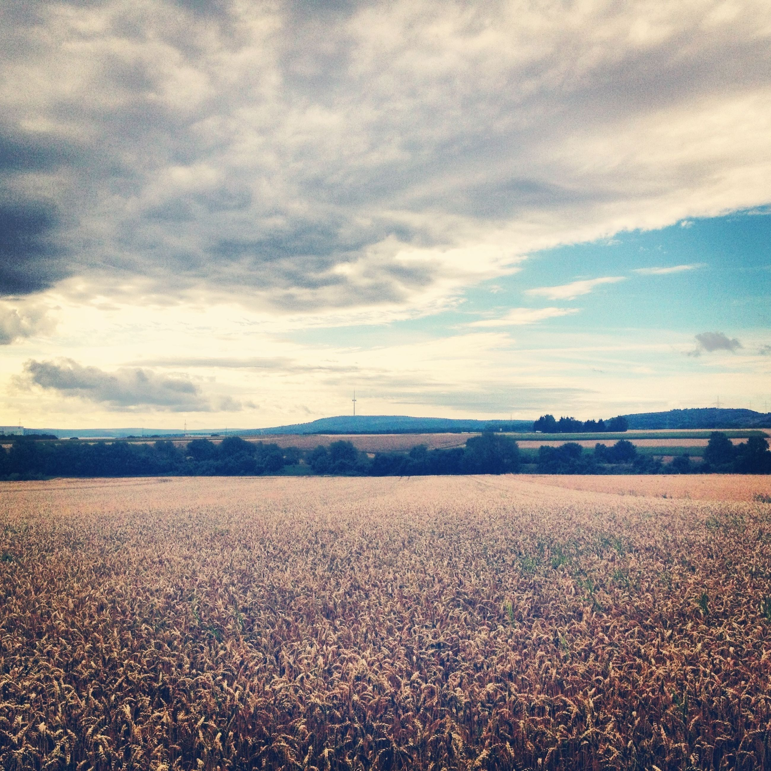 landscape, sky, tranquil scene, agriculture, rural scene, field, tranquility, scenics, cloud - sky, beauty in nature, nature, farm, horizon over land, cloud, cloudy, crop, day, remote, outdoors, no people