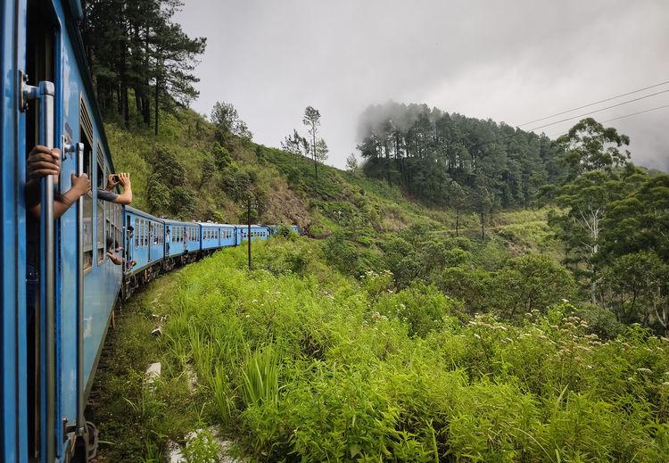 Scenic view of train