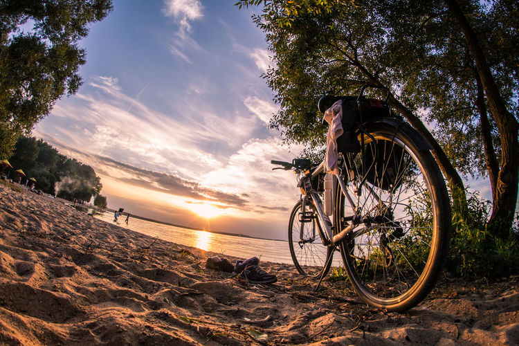 Beach Beauty In Nature Bicycle Land Land Vehicle Leisure Activity Lifestyles Nature Outdoors Plant Real People Riding Sea Sky Sunlight Sunset Transportation Tree Water