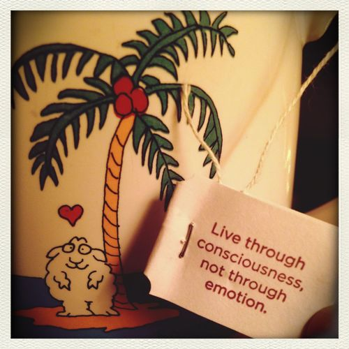 After five hours in the hospital, im finally able to watch some netflix and drink some bedtime yogi tea. Wordsofwisdom Tea Time Relaxation Goodadvice