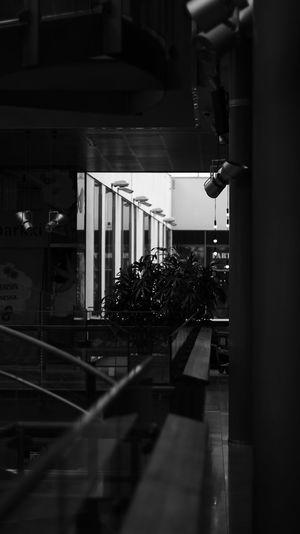 Sello ©️JaniVauhkonen No People Built Structure Architecture Day Indoors  JaniVauhkonen 600D Canon_official