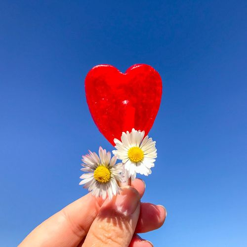 Cropped hand holding red heart shape lollipop with flowers against clear blue sky