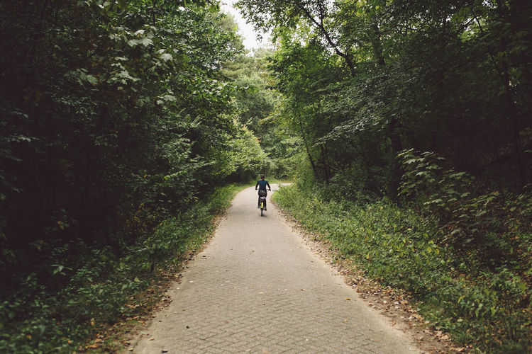 Rear View Of Woman Riding Bicycle On Footpath Amidst Trees