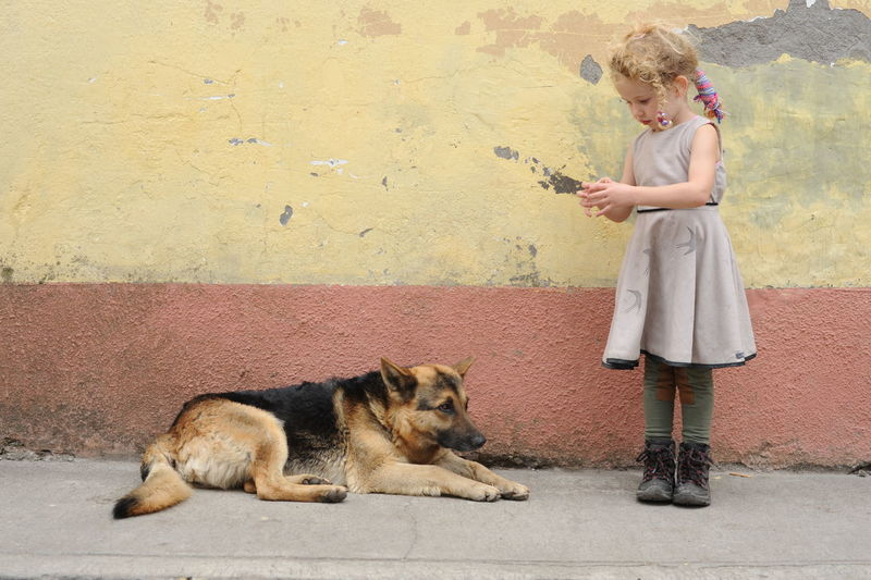 Girl With Dog On Street