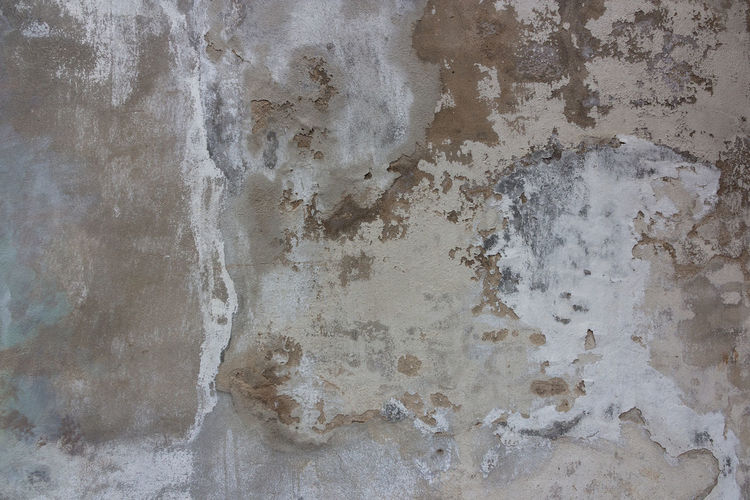 Old grey cement texture with crack,use as a background Wall - Building Feature Textured  Backgrounds Full Frame Built Structure Pattern Close-up No People Weathered Architecture Rough Old Bad Condition Gray White Color Deterioration Decline Damaged Run-down Abstract Concrete Abstract Backgrounds