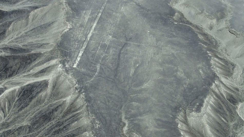 ハチドリ ナスカの地上絵