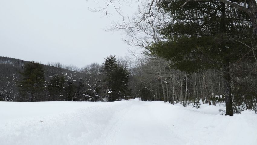 Maine Beautiful Winter Maine Winter Winterscapes Snow Covered Landscape Snowyroad Snowbanks Snowscape Into The Woods Snowymountain