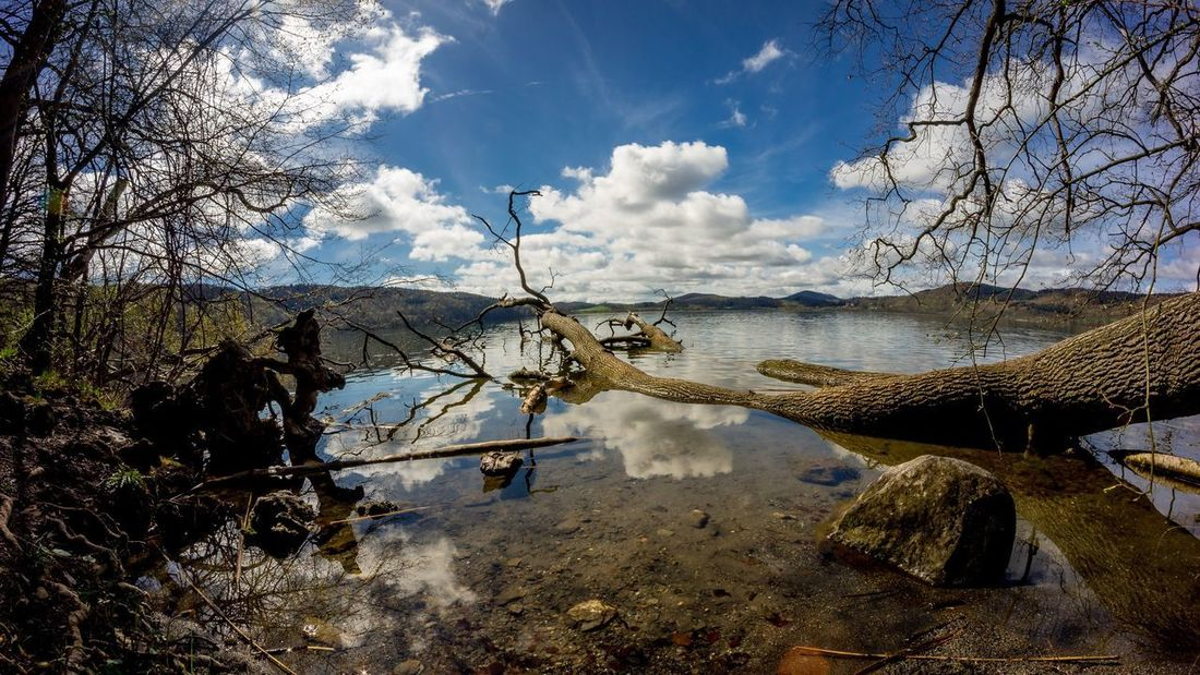 Sky Water Cloud - Sky Nature Sunlight Day Sea No People Reflection Beauty In Nature Outdoors Tree