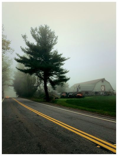 Foggy Morning in Farm Country Road Transportation Sky Plant Road Marking Tree Nature Double Yellow Line No People Outdoors Day Beauty In Nature Marking Environment