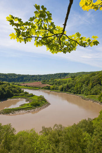 the river severn in south Wales Agriculture Backgrounds Landscape Music Nature No People Outdoors River River Severn Riverside Scenics Sky South Wales Travel Tree Wales Water