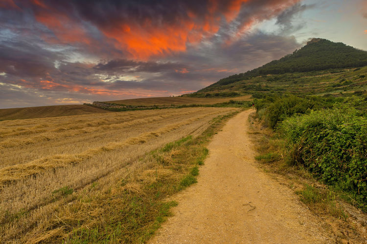 Scenic view of road amidst field against sky during sunset