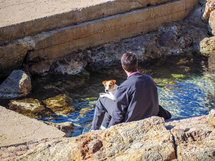 Rear view of man with dog sitting on rock
