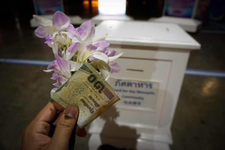 Cropped hand of person holding paper currency against donation box