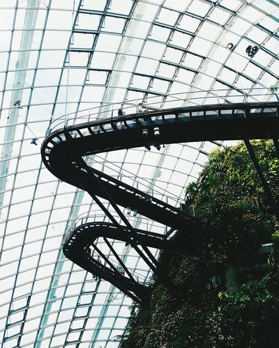 Gardens by The Bay, December 2016 Day Outdoors Architecture Built Structure First Eyeem Photo Greenhouse Botanical Garden Beauty In Nature Plant Nature