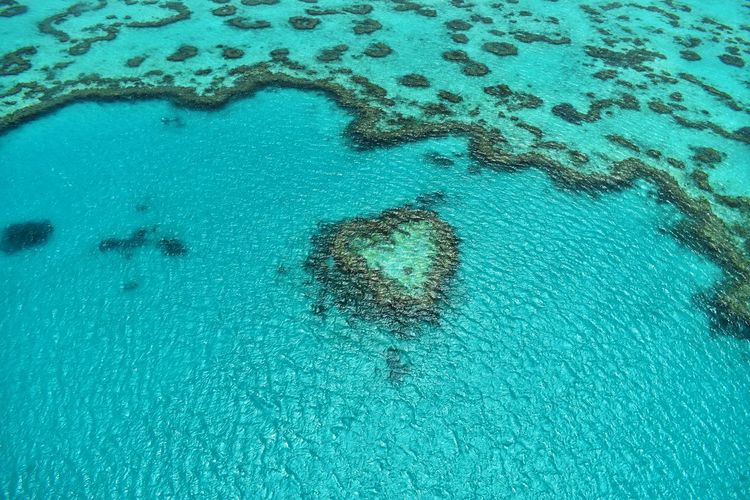 Water Turquoise Colored Sea High Angle View Nature Day Waterfront No People Blue Beauty In Nature Outdoors Pool Swimming Pool Transparent Aerial View Scenics - Nature Idyllic Tranquility Land