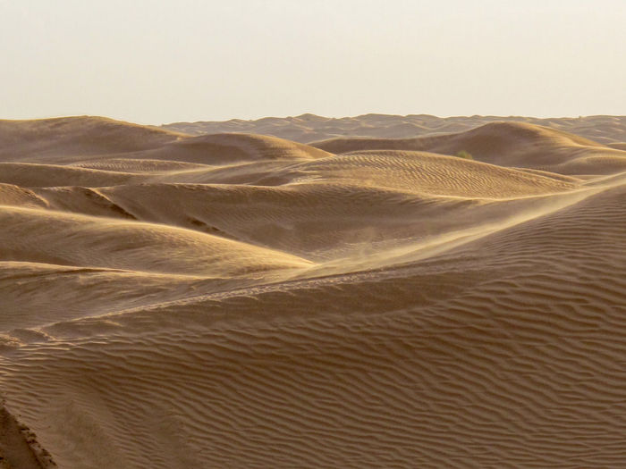 Tunisia travel holidays Desert Scenics - Nature Sand Landscape Arid Climate Climate Sand Dune Land Tranquility Tranquil Scene Beauty In Nature Non-urban Scene No People Sky Nature Environment Day Remote Geology Physical Geography Outdoors Atmospheric