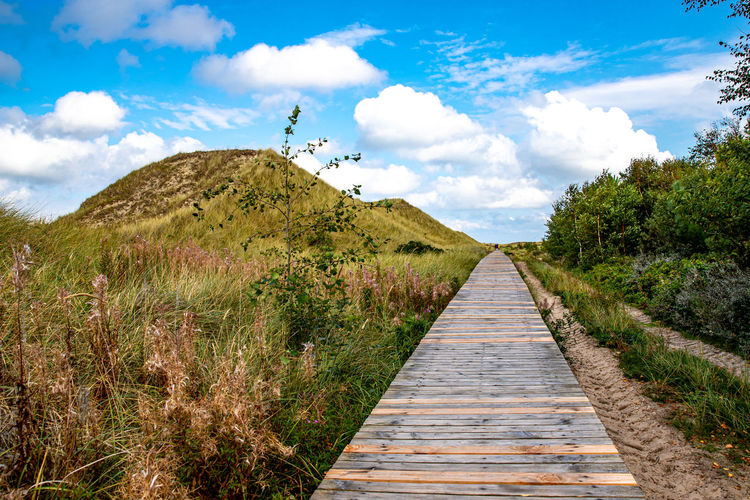 Boardwalk along