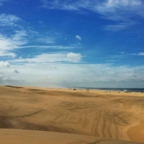 The sand dunes of Australia Portstephens