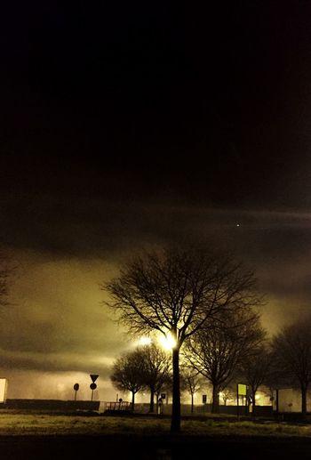Nei giorni di nebbia puoi smettere per un attimo di guardare, puoi respirare, ed ascoltare… chiudi gli occhi e concentrati sulle tue sensazioni, perchè anche un giorno di nebbia non è per caso. (Stephen Littleword) Nebbia Fog Foggy Morning Foggy Day Foggy Night No People Foschia Ombre Luci Tetro Tree Outdoors Night Sky Bare Tree Nature Cloud - Sky Silhouette Beauty In Nature Sunset NoPeopleAround Silence Silent Moment