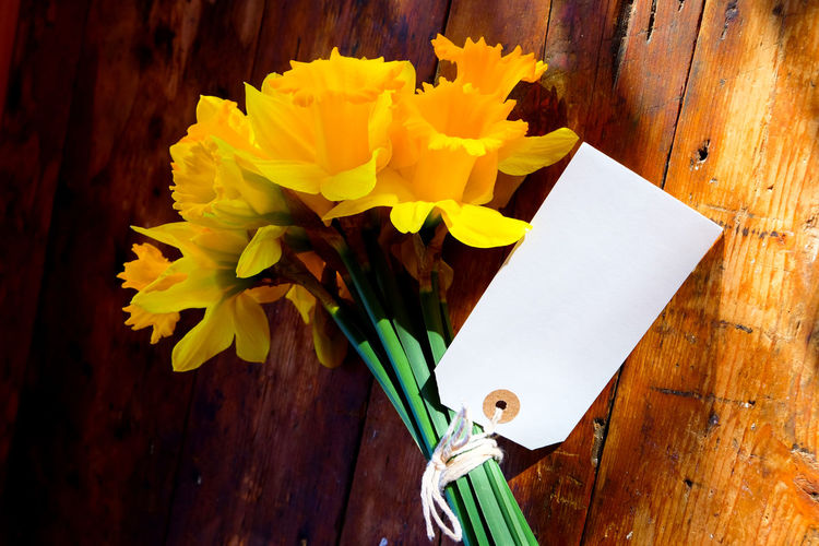 Easter Flowers Beauty In Nature Blank Label Bouquet Close-up Daffodil Flower Daffodils Daffodils Flowers Daffodils In The Sun Day Flower Flower Head Fragility Freshness Indoors  Label Nature No People Paper Room For Text Table Text Space White Color Wood - Material Yellow