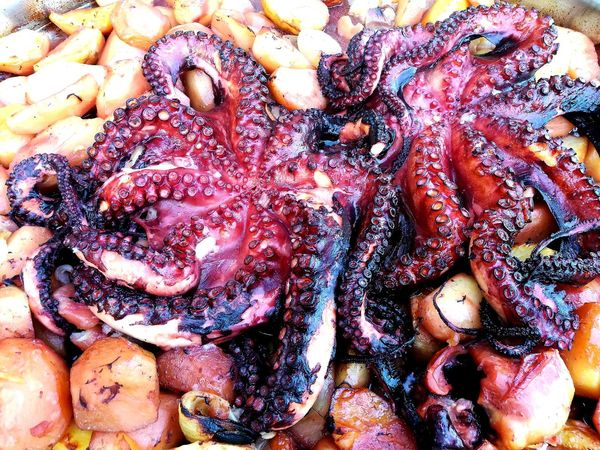 EyEmNewHere Food Food And Drink Foodphotography Foodphoto Octopus Octopus Tentacle Potatoes Tasty😋 Tastyfood SEAFOOD🐡 Backgrounds Full Frame Multi Colored Close-up Detail