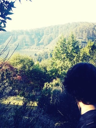my love for you and nature.