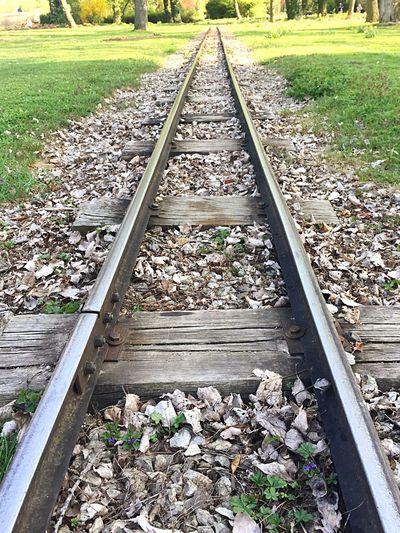 Trainrail Spring Sunnyday Oneway Grass