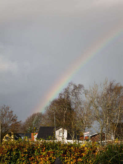 Rainbow over house and trees against sky