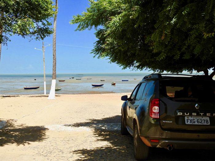 Barrinha / Piauí / Brazil Piauí Beach Beauty In Nature Car Clear Sky Day Horizon Over Water Low Tide Nature No People Outdoors Overland Roadtrip Sand Scenics Sea Shore Sky Sunlight Tree Water