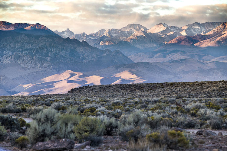 Mountain Scenics - Nature Beauty In Nature Landscape Sky Environment Mountain Range Tranquil Scene Nature No People Outdoors Snowcapped Mountain Eastern Sierras California Wilderness