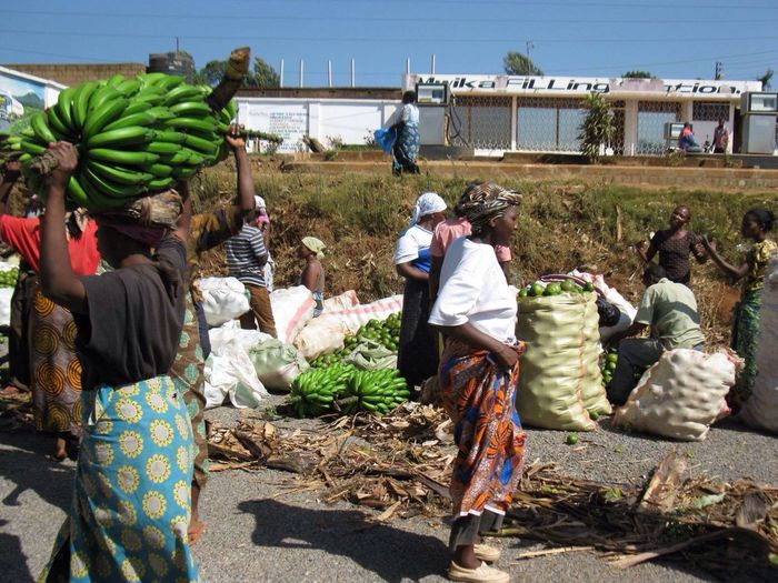 Kenia Africa