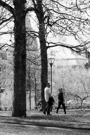 City Walk Bare Tree Black And White Photography Bonding Day Father And Daughter Full Length Leisure Activity Lifestyles Nature Outdoors People Plant Positive Emotion Real People Rear View Spring Feelings Togetherness Tree Tree Trunk Trunk Two People Walking Women Örebro  #urbanana: The Urban Playground