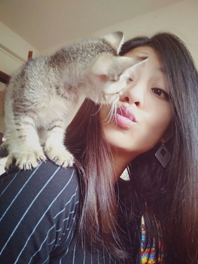 Happiness Kitten Love <3 Looking At Camera Taking Pictures Domestic Animals Check This Out Having Fun :) Cute Me And Munchy... 😍 😍 😍