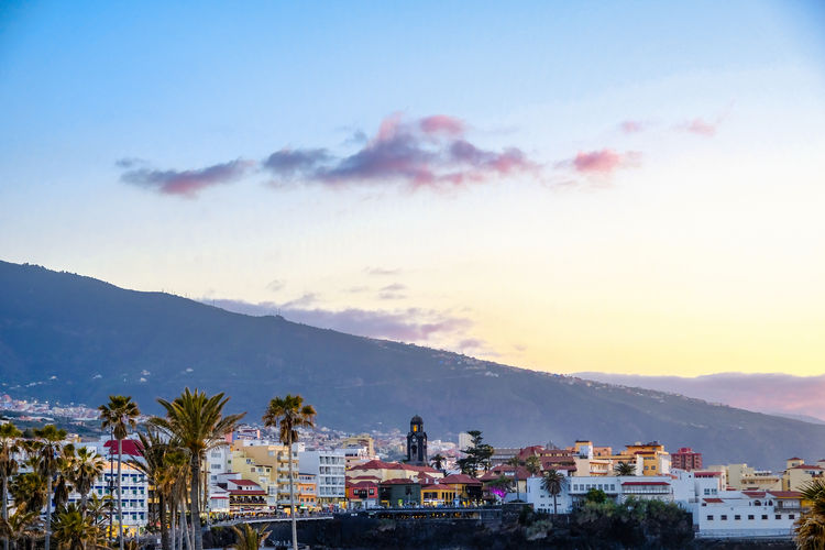 In the evening in Puerto de la Cruz. During a tour of the city, these pictures were taken just before and during sunset. The light mood on site was just awesome. Canary Islands City Cityscape EyeEm EyeEm Best Shots EyeEm Nature Lover EyeEm Selects EyeEm Gallery FUJIFILM X-T2 Feliz-Photo Landscape_Collection Palm Tree Puerto De La Cruz SPAIN Sky And Clouds Sunset_collection Eye4photography  Landscape_photography Montains    Mountain Range Overhead View Sunset Tenerife Teneriffa Xphotographer